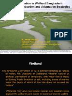 Livelihood adaptation in wetland Bangladesh - Presentation