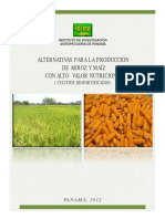 Alternativas para producción de arroz