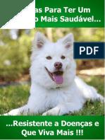 3 Dicas Para Um Cachorro Saudavel