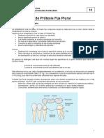Fundamentos prótesis fija plural