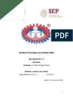 RESUMEN UNIDAD 2.pdf