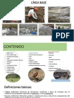 LINEA BASE FISICA.pdf