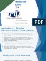 Pil Andina - Microeconomia