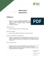 Instructivo PROYECCION PRESUPUESTARIA 2017-2018p
