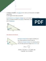 triangulos rectangulos