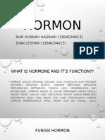 Hormon nur husnah dan dian lestari.pptx