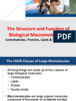 Biomolecules_The_Structure_and_Function_of_Carbohydrates_Lipids_and_Phospholipids