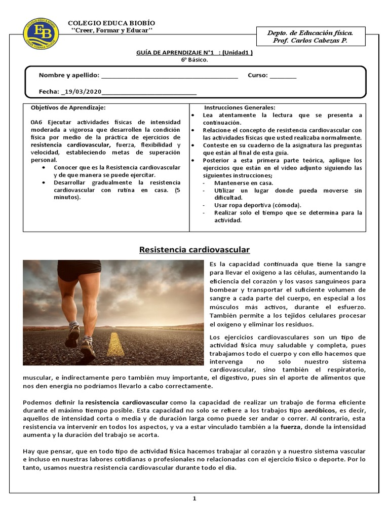Guia 6 N 1 Musculo Sistema Circulatorio