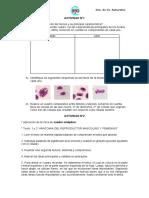 ACTIVIDAD DIAGN 4º.pdf
