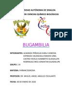 BUGAMBILIA.docx