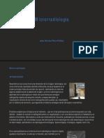 microradiologia-1