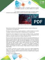 Base de datos participacion individual.docx