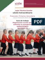 1. Guía del CTE Extraordinaria Marzo 2020