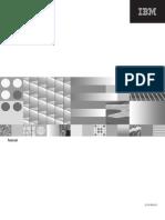 IBM Quality Stage WebSphere