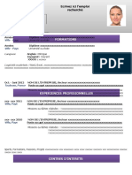 25-modele-cv-attrayant-violet-97-2003.doc