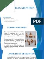 diapositivas de perdidas menores.pptx