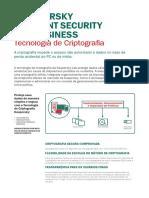 Data_Sheet_Encryption_Technologypt