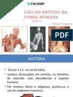 Aula 1- Introdução do estudo à anatomia.pptx