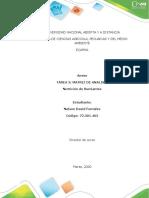 Anexo 1. Matriz de análisisNelson