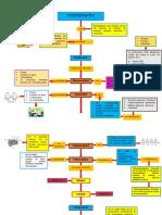 mapa conceptual bioquimica 123.pdf