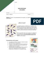 Guia Ciencias naturales Gases y sus caracteristicas..docx