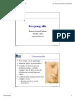 Estegano.pdf