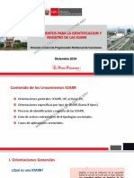 Lineamientos_IOARR.pdf
