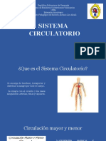 Presentación Sistema Circulatorio Grupo 4