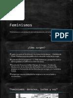 Feminismos[1]
