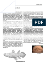 004 Infotext Latimeria.docx