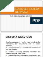 1 FARMACOLOGIA DEL S.N.pptx