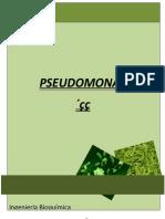 92710527-PSEUDOMONAS-MICROBIOLOGIA.docx