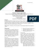 Práctica _5_RQP.pdf