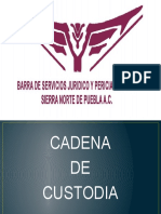 2 CADENA DE CUSTODIA