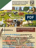 generalidades propedeutica clinica veterinaria
