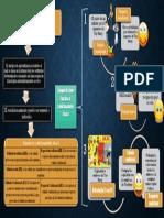 CONDUCTA SEM 5Y6.pdf