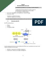 Tema-5-Metabolismo-Celular