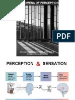 5._Phenomena_of_perception_2020 (2).pptx