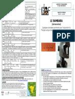 BAMBARA_09_05_16.pdf
