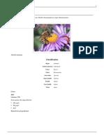 Apis-(genre).pdf