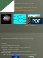 NEUROPSICOFISIOLOGIA DO SONO
