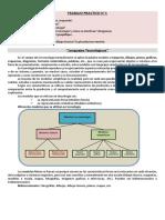 tpn1 lenguajes tecnologicos.pdf
