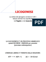 glicogenesi