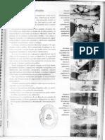 (75-81) El Estado moderno - concepto y caracteres - Sandra Elena.pdf