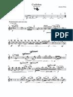 Cuélebre flauta sola