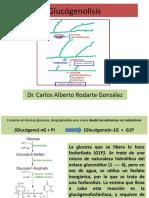 GLUCOGENOLISIS.pptx
