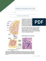 PREPARADOS PATOLOGÌA FINAL 2020.docx