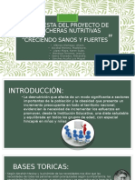 Propuesta Del Proyecto de Loncheras Nutritivas (3)