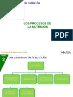 2CN_22_4P_procesosnutri