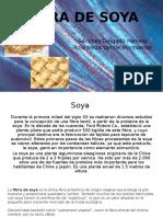 FIBRA DE SOYA